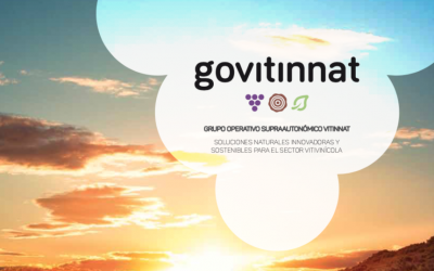 G.O. PROJECT FROM VITINNAT – WATCH THE VIDEO!