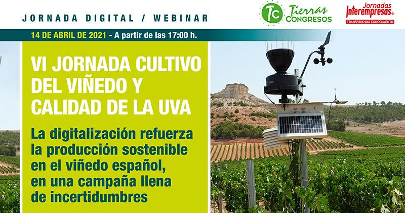 VI Jornada ONLINE Cultivo del Viñedo y calidad de la Uva. 14 DE ABRIL 17:00H